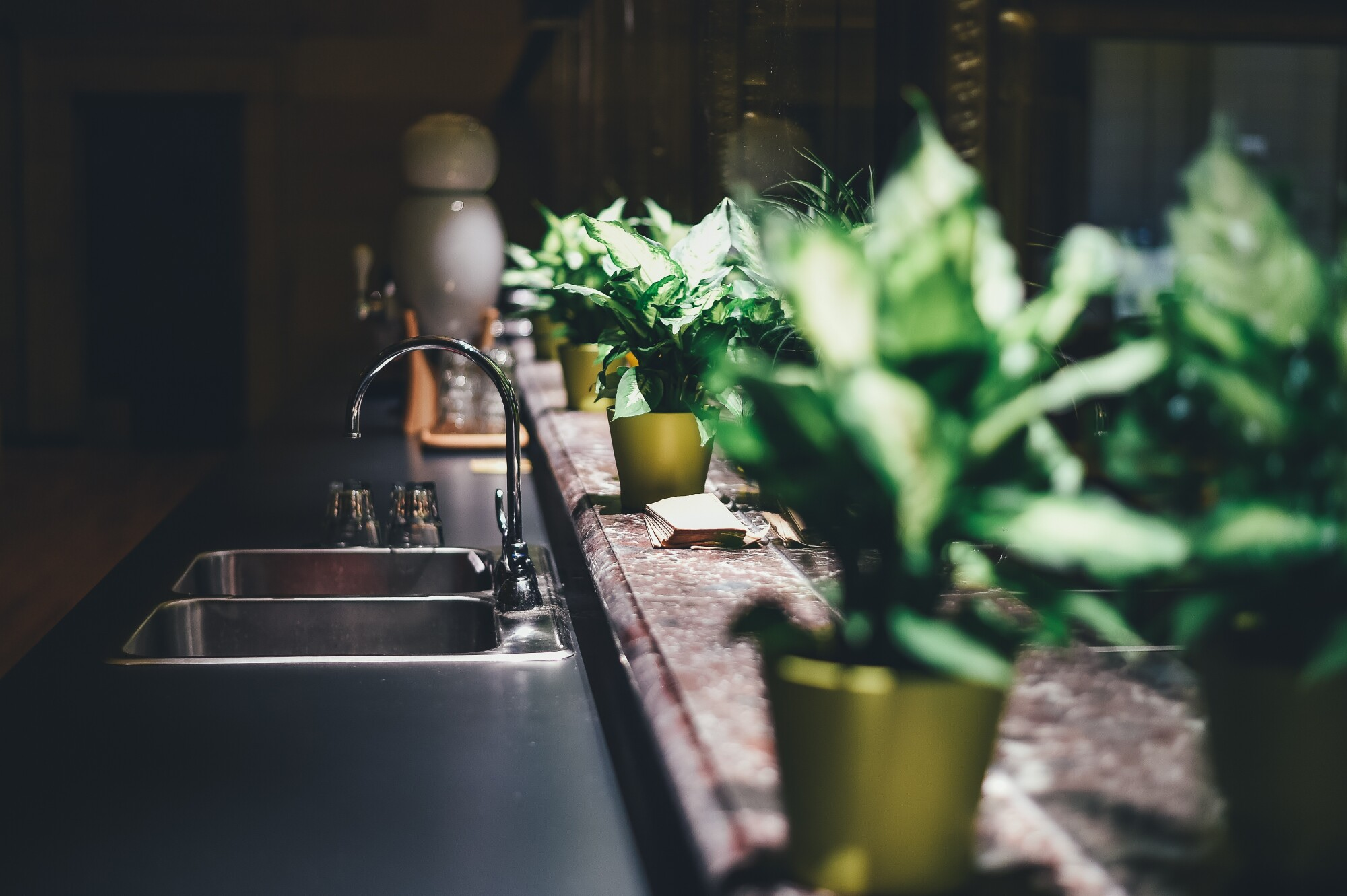 Bringing a little green to your kitchen doesn't have to be hard! Put a few plants and add in some eco-friendly products and you're almost there!