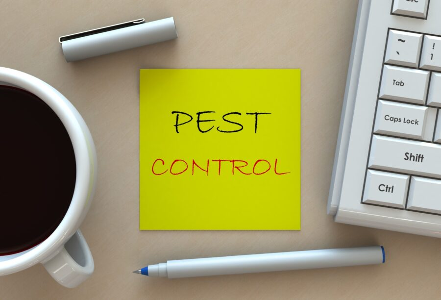 It is important to take care of an ant infestation problem as soon as it arises. Here are 8 signs that you need to call pest control.