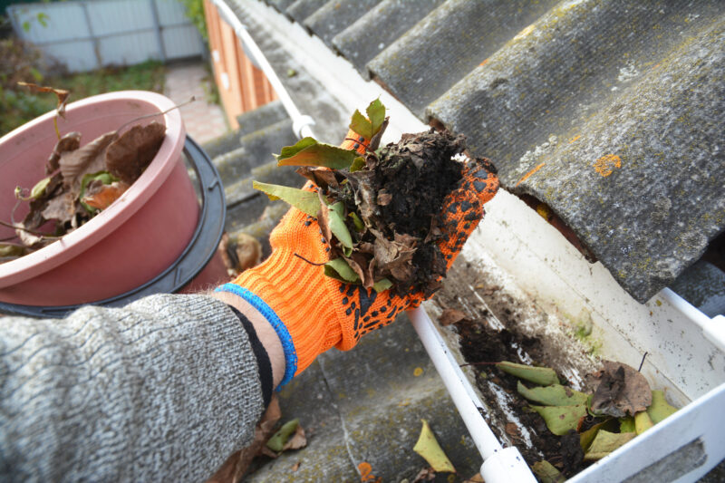 Do you hate when you have to deal with gutter maintenance? Read this article for the beautiful benefits of regular gutter maintenance.