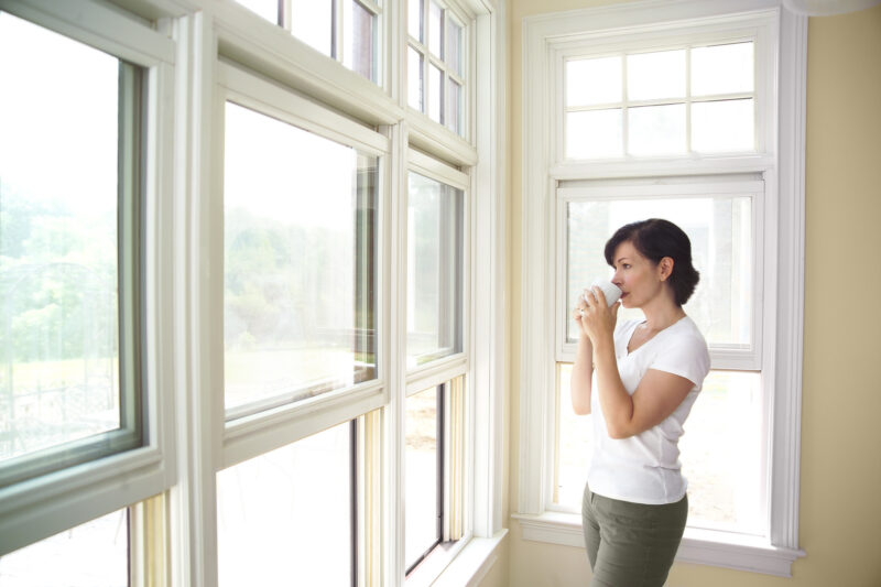 Exterior windows are important; they're among the first things you can see on a home. How do you choose a window color and design? Learn here.